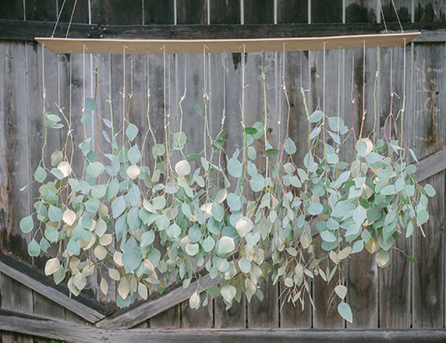 Eucalyptus Op Je Bruiloft Theperfectwedding Nl
